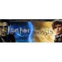 Harry Potter/ Fantastic Beasts